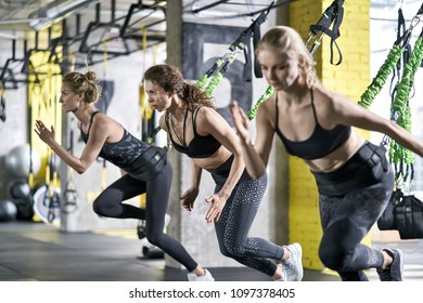 Delightful girls are training intensive with goflo-trainers in the gym. They are wearing the multicolored sportswear: pants, tops and sneakers. Horizontal.