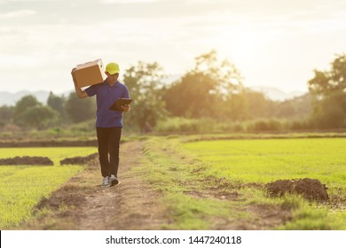 Delivery man holding brown parcel or cardboard boxes and delivery to customer at countryside and view of rice field. Can be delivery to anywhere concept