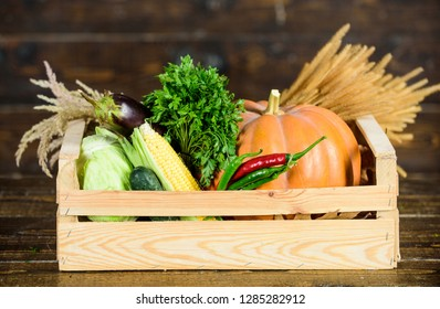 Delivery service fresh vegetables from farm. Box or basket harvest vegetables wooden background. Excellent quality vegetables. Grocery shop concept. Buy fresh homegrown vegetables. Just from garden.