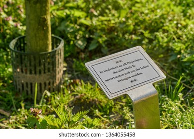 Delmenhorst, Germany - April 07, 2019: Commemorative plaque in front of a young tree planted in memory of the victims of the former nurse Niels Högel who have been murdered by him in Hospital