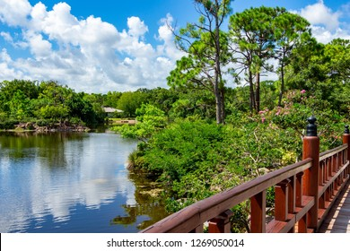 DELRAY BEACH, FLORIDA, USA - AUGUST 7, 2018: Lake at the Morikami Japanese Gardens with wooden bridge in foreground
