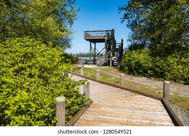 Delta, BC/Canada - 2018 05 05: wooden lookout platform at the end of a wooden walkway near the coast of Deas Island in Delta.
