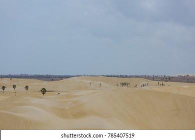 Delta - Parnaiba river