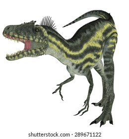 Deltadromeus on White - Deltadromeus was a theropod carnivorous dinosaur that lived in Northern Africa during the Cretaceous Period.