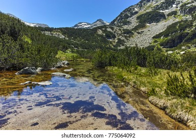 Demirkapiyski chukar peak and Banski lakes, Pirin Mountain, Bulgaria