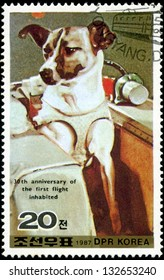 DEMOCRATIC PEOPLE'S REPUBLIC (DPR) of KOREA - CIRCA 1987:A stamp printed in DPR Korea (North Korea) shows Wright 30 anniversary of the first flight inhabited, dog, circa 1987