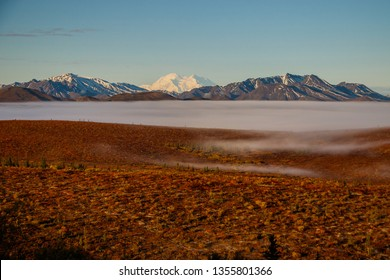 Denali national park tundra at foggy morning, Alaska