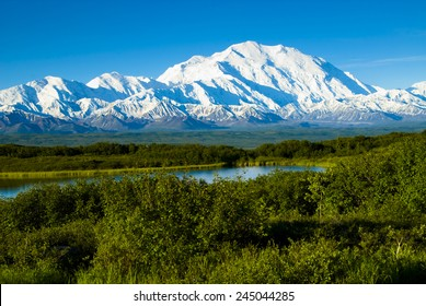 Denali from near Wonder lake