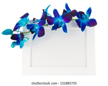 Dendrobium orchid with photo Frame on light background