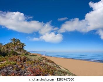 Denia las Marinas les Bovetes beach in Alicante of Spain dunes