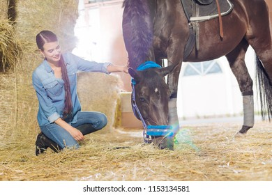 Denim clothes. Appealing good-looking horsewoman wearing denim clothes petting beautiful dark horse