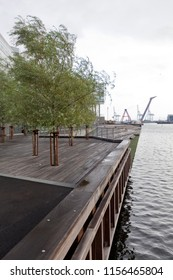 Denmark, Aarhus - October 18, 2014: Greening the pier with trees and twilight on the beach in the city of Århus