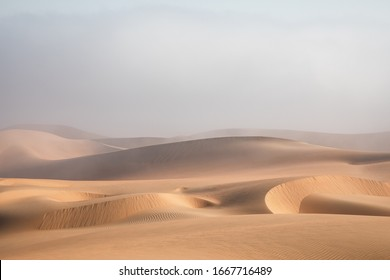 Dense fog covering desert landscape early winter morning. Liwa desert, Abu Dhabi, United Arab Emirates.