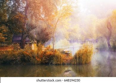 Dense fog on a small pond