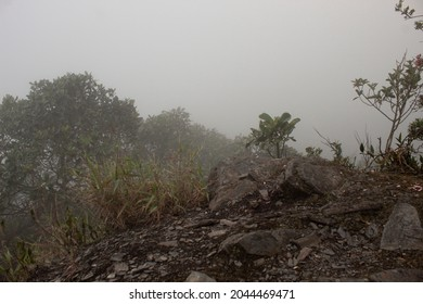 dense fog viewed from a stoned ground over a mountainviewtop at rain forest
