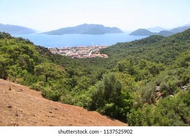 Dense pine forest on the mediterranean coastal hills, holiday resort building near the beach
