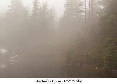 A dense spring fog settles over a subalpine lake obscuring the water and shoreline as it reduces visibility.