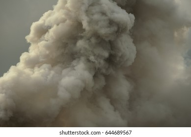 Dense white smoke rising from the raging wildfire,close up swirling white smoke background.
