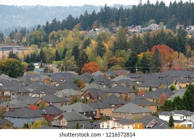Densely populated North American suburban homes residential neighborhood in Happy Valley Oregon during fall season