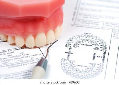 Dental Form and Model of Upper Teeth