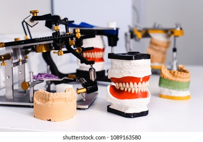 Dental model and dental equipment on white background, concept medical image of dental healtcare, dental hygiene
