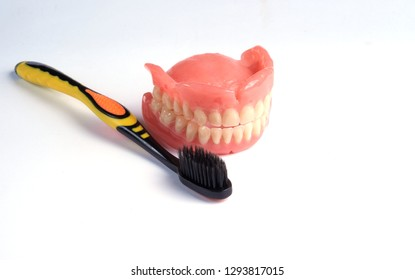 Dental prosthesis and toothbrush on a white background