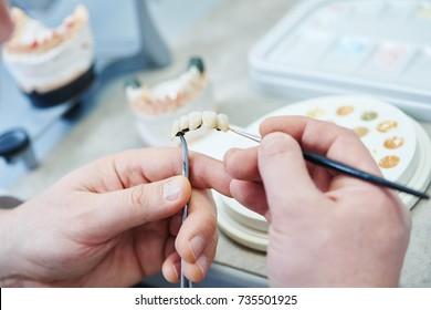 dental prosthesis work. Painting teeth