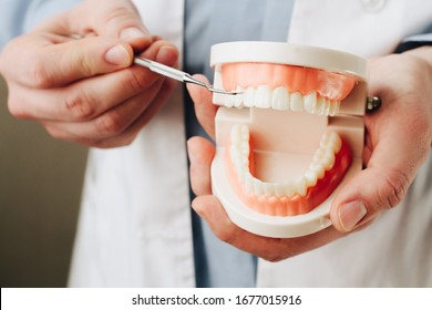 Dentist showing jaw model and dentist tool  closeup. Oral care concept