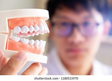 dentist with teeth model in dental clinic