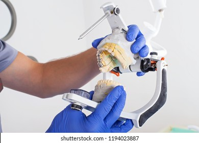 Dentist using dental articulator for a correct occlusion