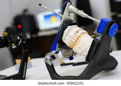 Denture cast in plaster for the dentist