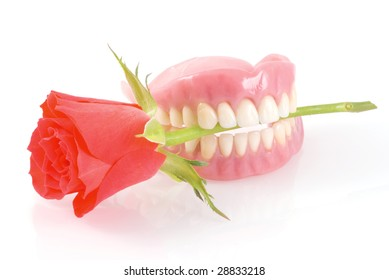 Dentures holding red rose romantically; on a white background.