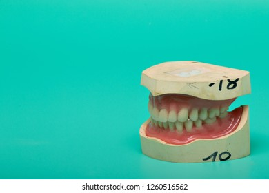 Dentures model with medical instruments on a bright green background