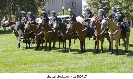 DENVER - AUGUST 26: A line of police officers wait on horseback during the Democratic National Convention August 26, 2008 in Denver.