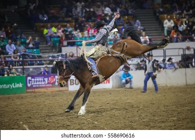 DENVER, COLORADO - JANUARY 13, 2017: Rodeo Horse Bucking at the National Western Stock Show