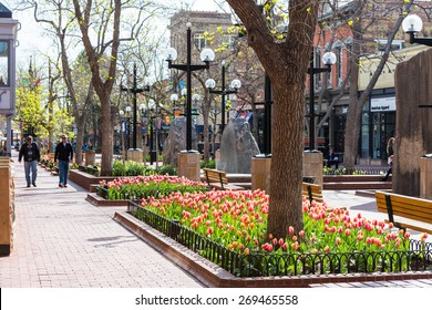 Denver, Colorado, USA-April 10, 2015. Pearl Street Mall during tulip bloom in early Spring.
