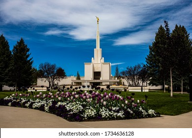 Denver, Colorado,USA, 5/12/2020, front of Denver temple of the Church of Jesus Christ of Latter Day Saints with colorful flower bed in front and golden angel Moroni atop spire
