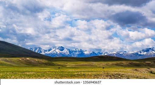 The (Deosai) National Park in the Northern Pakistan