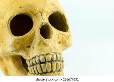 The depiction of the human skull isolated background