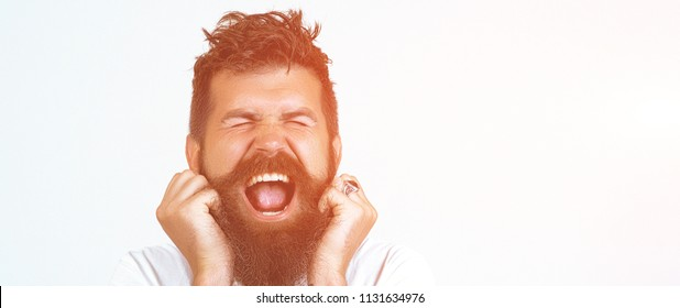 Depressed angry hipster bearded man yelling and screaming. Screaming bearded brutal man and looking at the camera with hands up, Goal, Winner, Celebrating. Face expression. Crazy man with beard.
