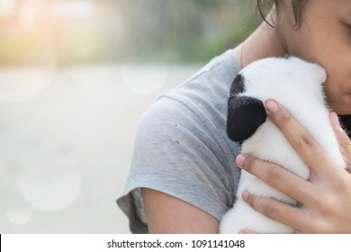 depressed cute female asian Thai girl kid teen hug hold new born half french bulldog puppy in orange morning light with copy space pet and animal mental healthcare therapy concept