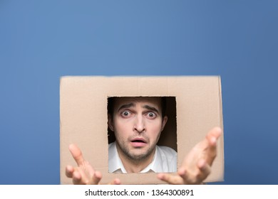 Depressed man with box on head, gesticulate, looking at the camera, front view, blue background, copy spase