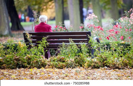 Depressed And Sad Old Woman Sitting Alone On Bench In The Park