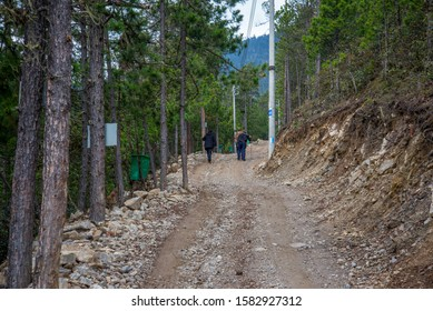Deqin / China - May 2019: The trail in the forest near Yubeng village in Meili Snow Mountain (Kawa Karpo) range in Deqin, Yunnan Province, South China.