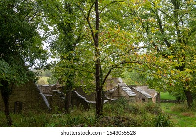 Derelict cottages at Tyneham village near Wareham in Dorset, UK. The village was abandoned during the Second World War when the area was needed for military training, and was never repopulated.