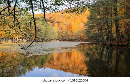 Derin Lake in Yedigoller National Park, Bolu, Turkey