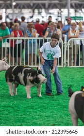 DES MOINES, IA /USA - AUGUST 10: Unidentified teen exercising and showing swine at Iowa State Fair on August 10, 2014 in Des Moines, Iowa, USA.