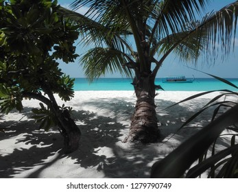 desert atoll in the maldives , white sand and paradisiac beach