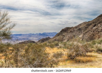 Desert brush and mountains in Southern California
