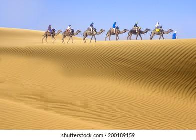 Desert and camel caravan